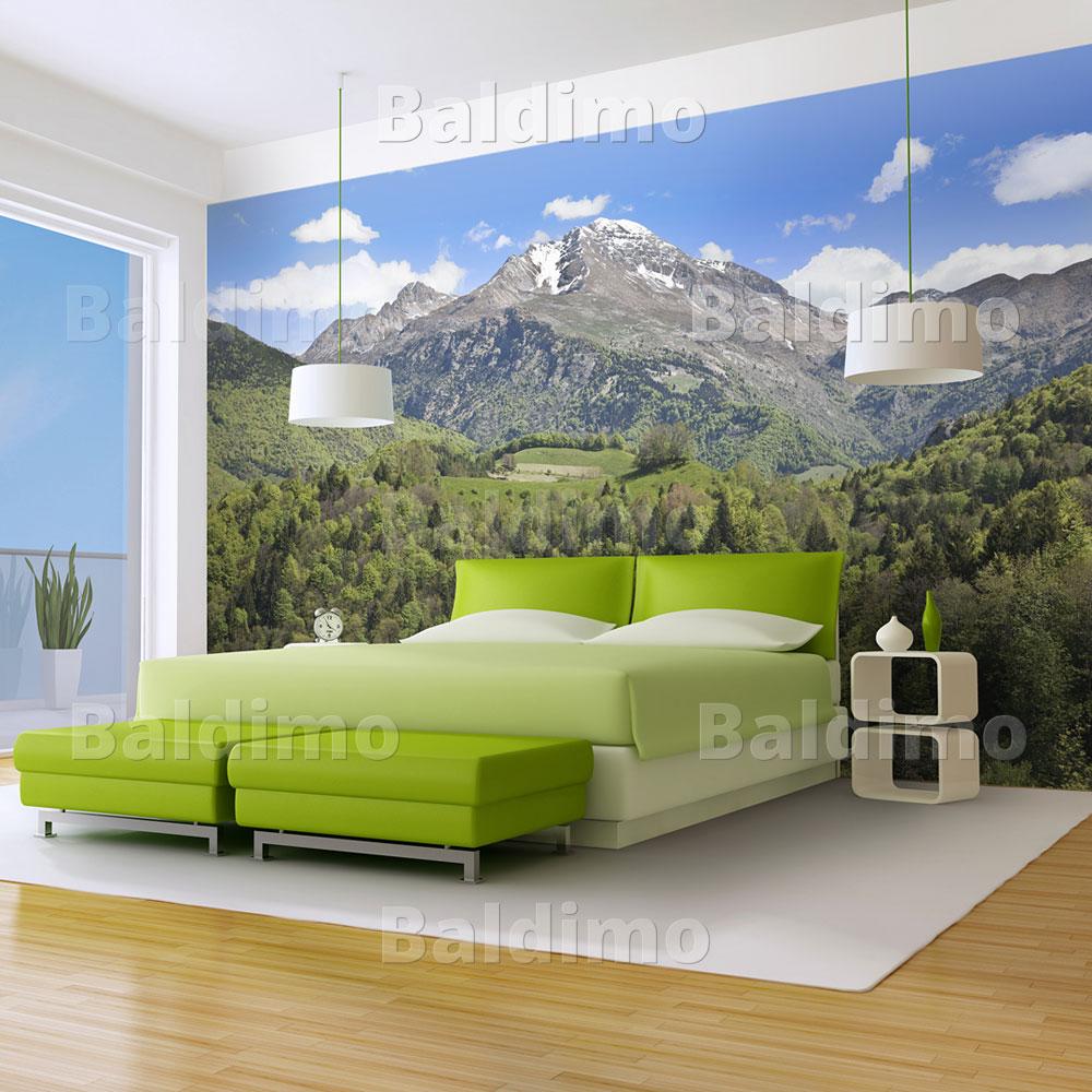 vlies fototapete tapeten wandbilder tapete natur 100403. Black Bedroom Furniture Sets. Home Design Ideas