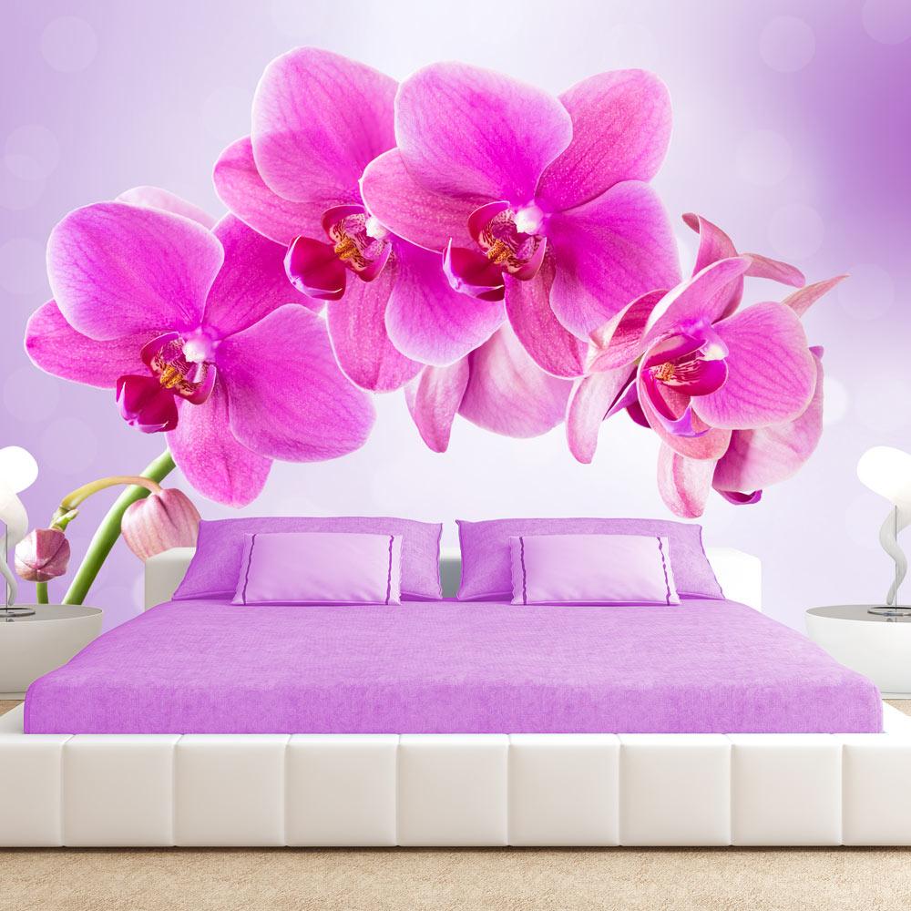 fototapete blumen orchidee vlies tapete xxl wandbilder. Black Bedroom Furniture Sets. Home Design Ideas