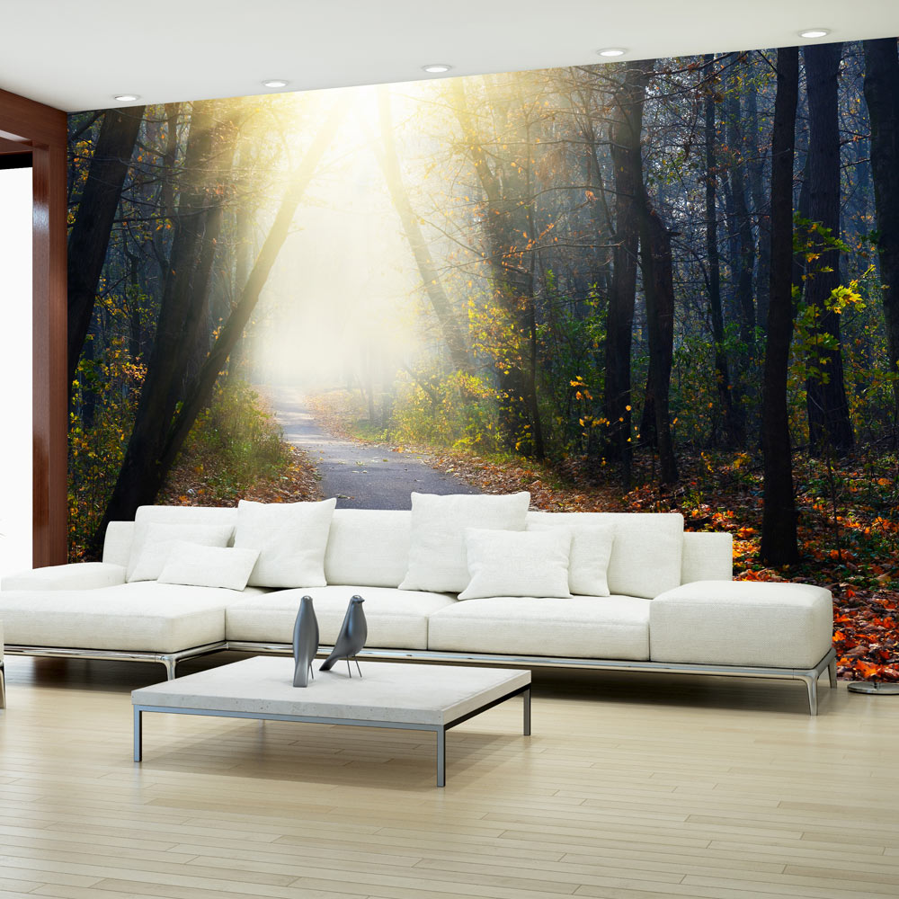 vlies fototapete 3 farben zur auswahl tapeten wald weg natur c a 0078 a b ebay. Black Bedroom Furniture Sets. Home Design Ideas