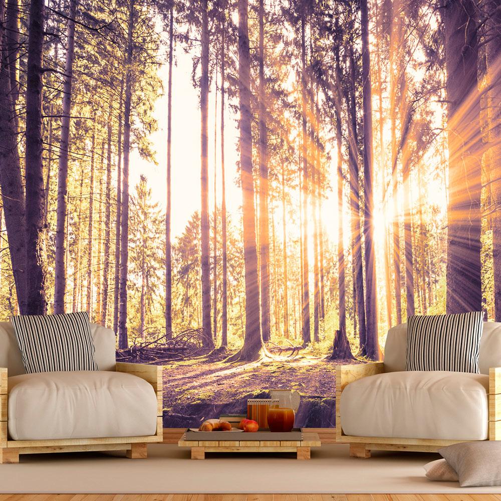 vlies fototapete 3 farben zur auswahl tapeten wald natur c b 0098 a b ebay. Black Bedroom Furniture Sets. Home Design Ideas