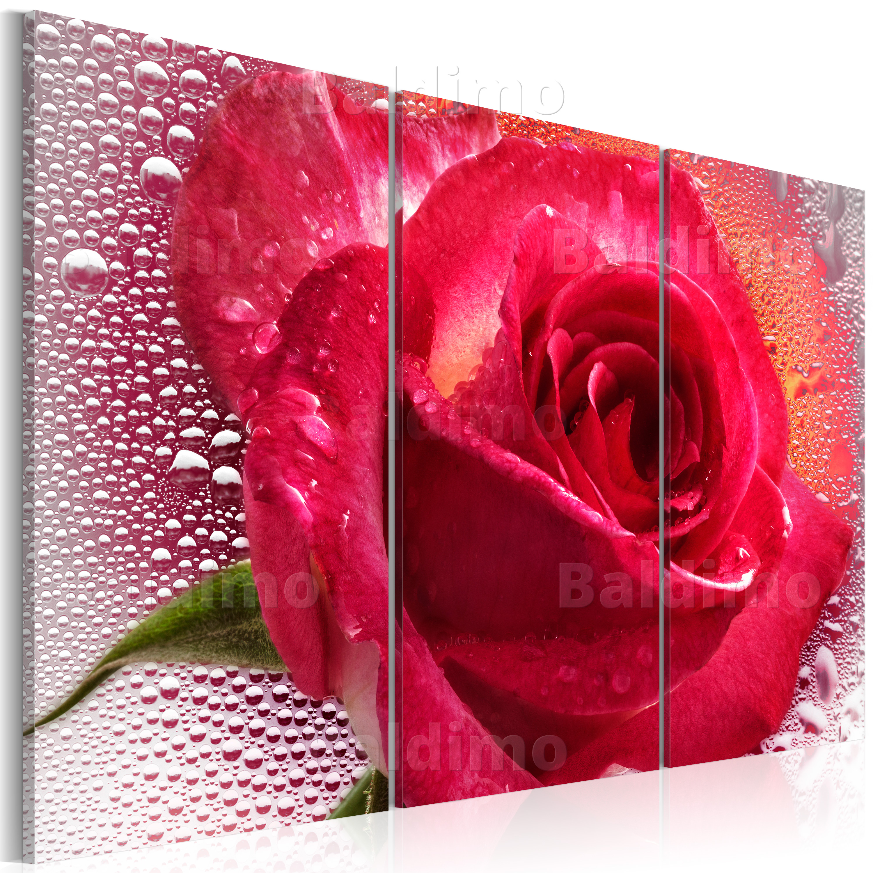 LARGE CANVAS WALL ART PRINT + IMAGE + PICTURE + PHOTO FLOWERS 020110-36