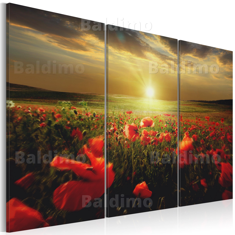wandbilder xxl mohn blumen ausblick natur leinwand bilder wohnzimmer 030112 40 ebay. Black Bedroom Furniture Sets. Home Design Ideas
