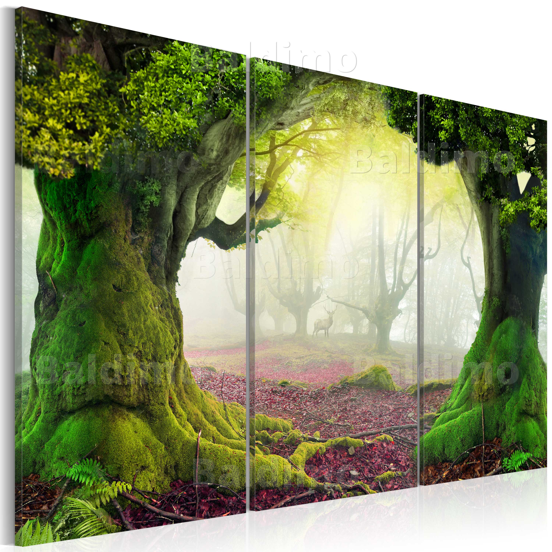 Wandbilder xxl wald fantasy leinwand bilder 120x80 60x40 for Wandbilder wohnzimmer leinwand