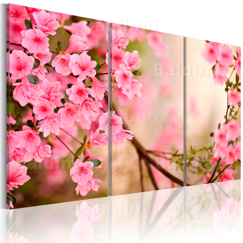 wandbilder xxl blumen natur rose leinwand bilder drucke wohnzimmer 030210 47 ebay. Black Bedroom Furniture Sets. Home Design Ideas