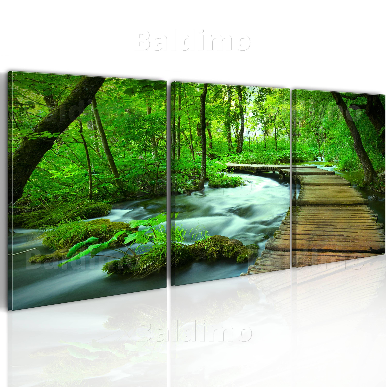 Wandbilder xxl wald landschaft ausblick natur leinwand for Wandbilder wohnzimmer leinwand