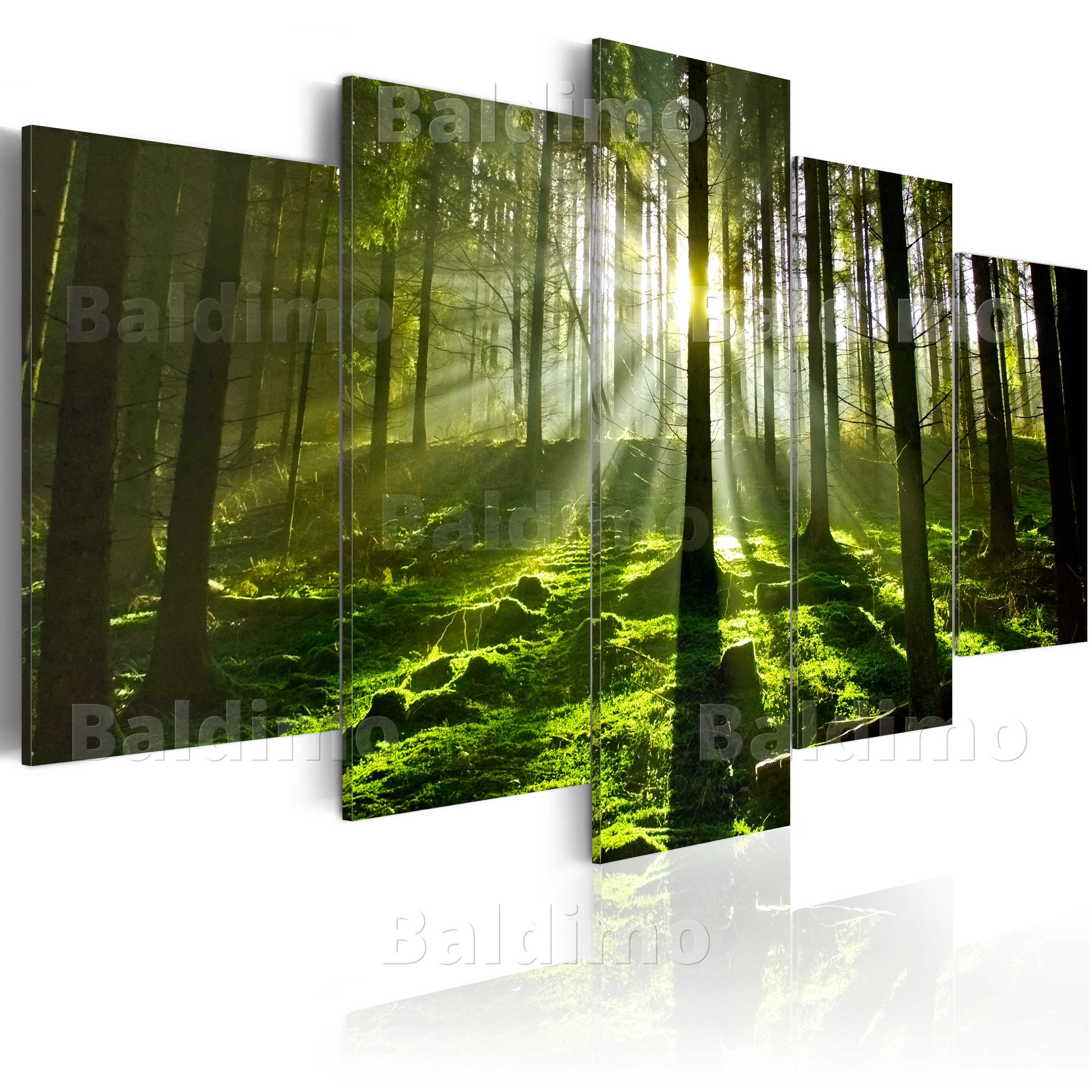 large canvas wall art print image picture photo nature wald 030213 32 ebay. Black Bedroom Furniture Sets. Home Design Ideas