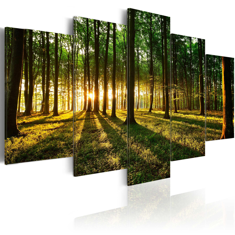 leinwand bilder xxl fertig aufgespannt bild wald. Black Bedroom Furniture Sets. Home Design Ideas