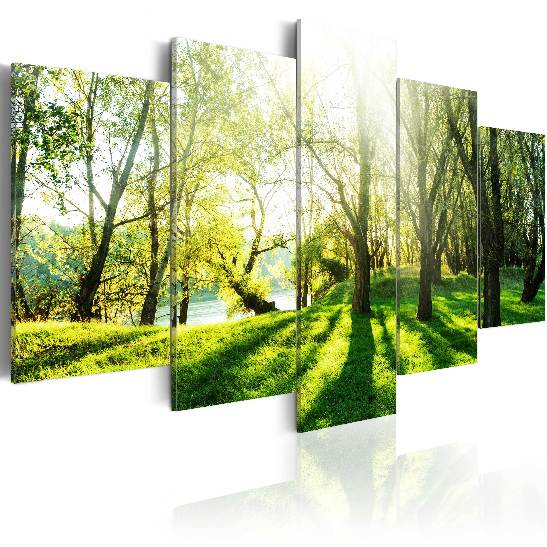 leinwand bilder xxl kunstdruck wandbild natur wald landschaft c b 0030 b n ebay. Black Bedroom Furniture Sets. Home Design Ideas