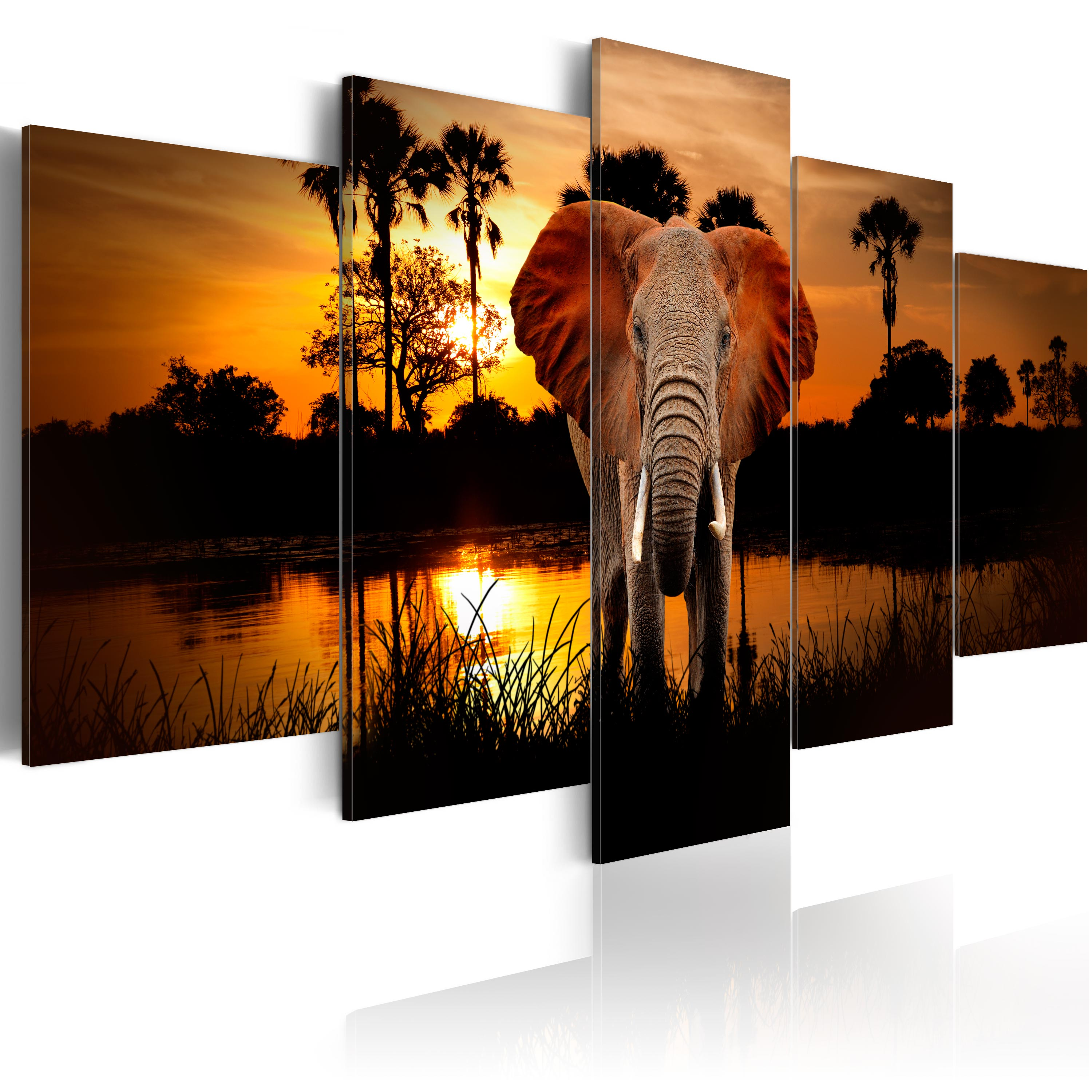 leinwand bilder xxl kunstdruck bild elefant afrika tier. Black Bedroom Furniture Sets. Home Design Ideas