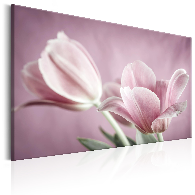 Innenarchitektur Wandbilder Blumen Foto Von Leinwand-bilder-xxl-kunstdruck-wandbild-blumen-tulpen-b-b-
