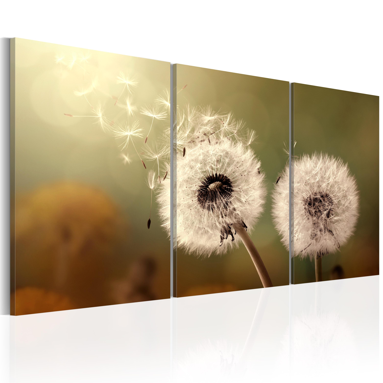 leinwand bilder xxl kunstdruck bild pusteblume natur. Black Bedroom Furniture Sets. Home Design Ideas