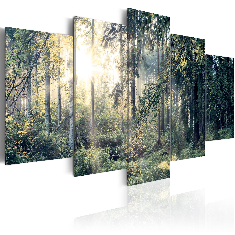 leinwand bilder xxl kunstdruck bild natur wald landschaft c c 0033 b n ebay. Black Bedroom Furniture Sets. Home Design Ideas