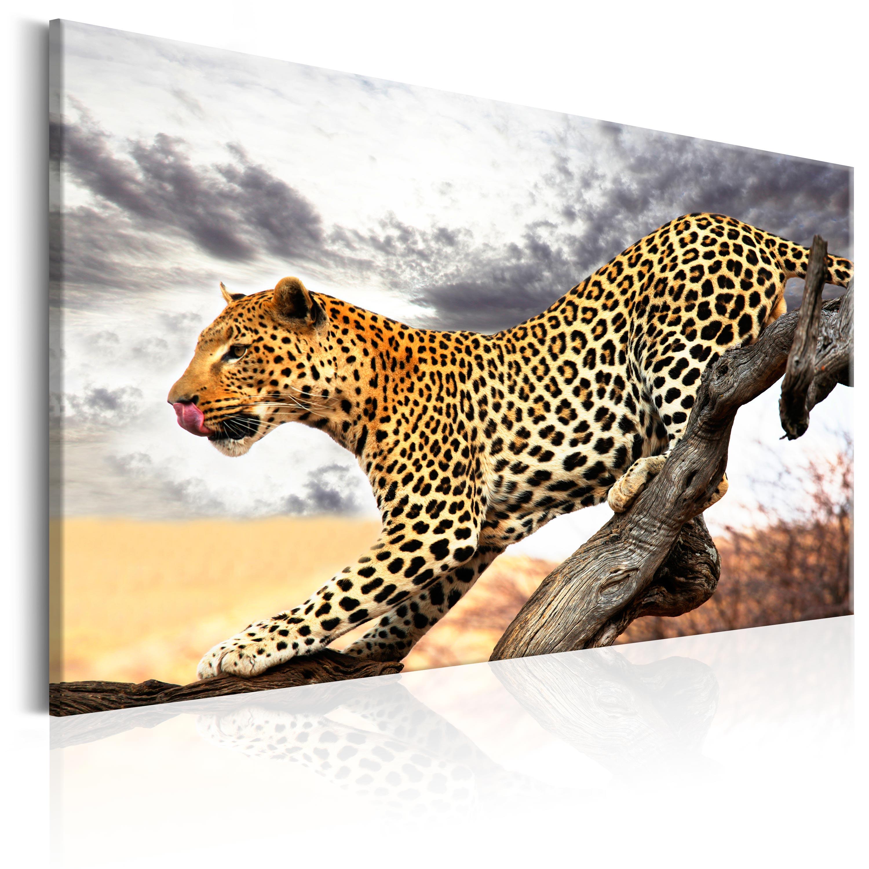 leinwand bilder xxl kunstdruck wandbild leopard tier. Black Bedroom Furniture Sets. Home Design Ideas