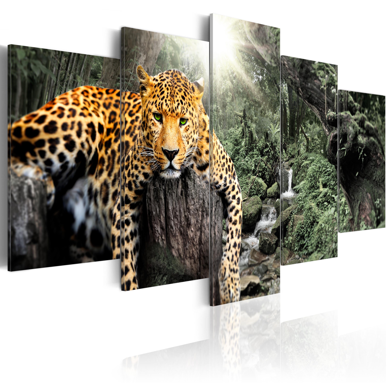 leinwand bilder xxl kunstdruck bild wild leopard tier afrika g c 0031 b n. Black Bedroom Furniture Sets. Home Design Ideas