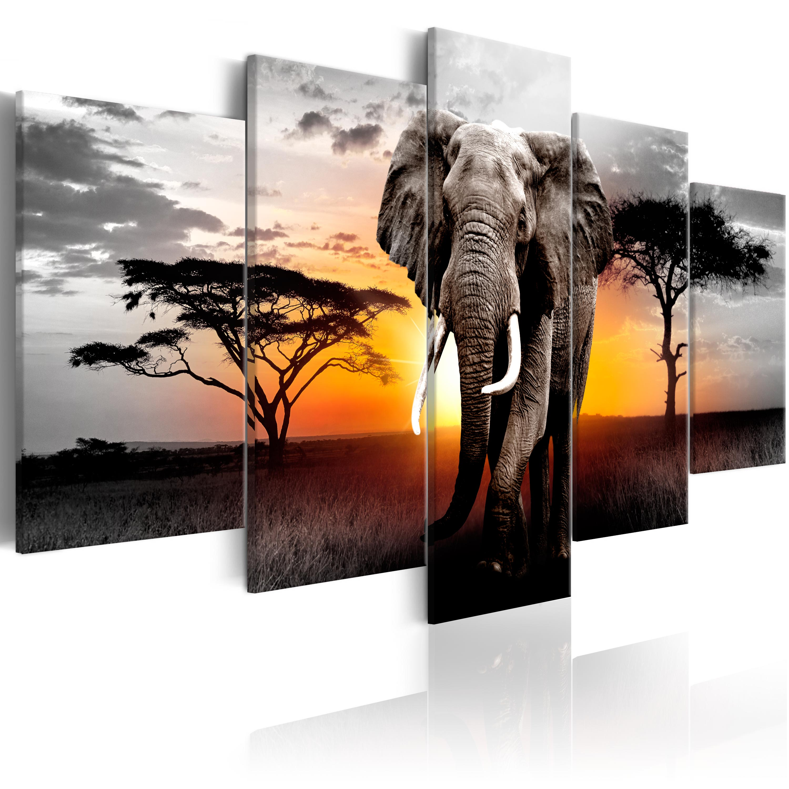wandbilder xxl elefant afrika natur tier leinwand bilder. Black Bedroom Furniture Sets. Home Design Ideas