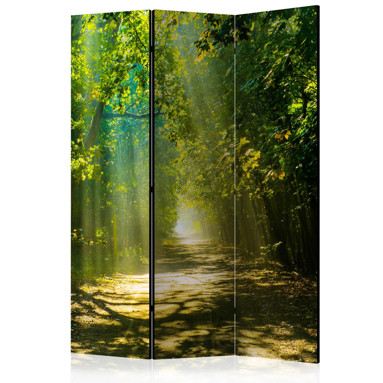 deko paravent raumteiler trennwand foto natur landschaft. Black Bedroom Furniture Sets. Home Design Ideas