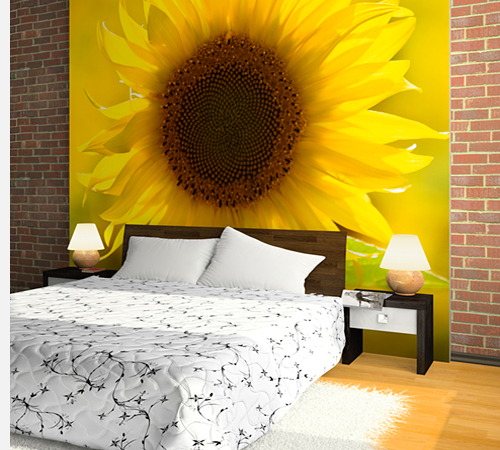 cuadros para dormitorios feng shui