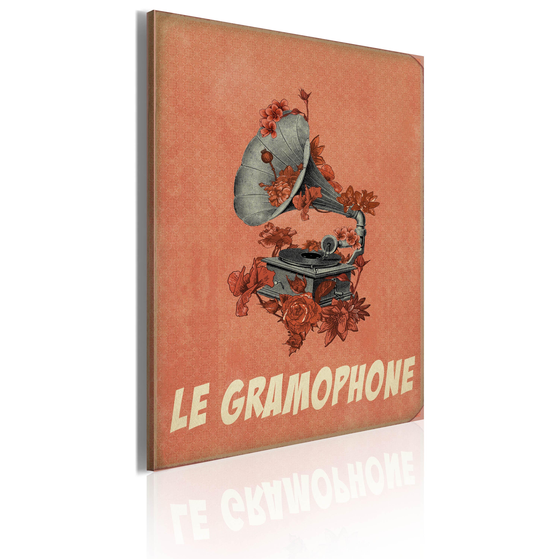 Quadro - Le gramophone 50X70 cm
