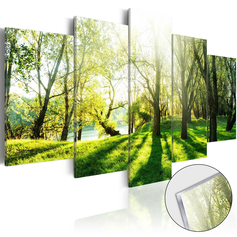 Quadri su vetro acrilico - Green Glade [Glass] 100X50 cm