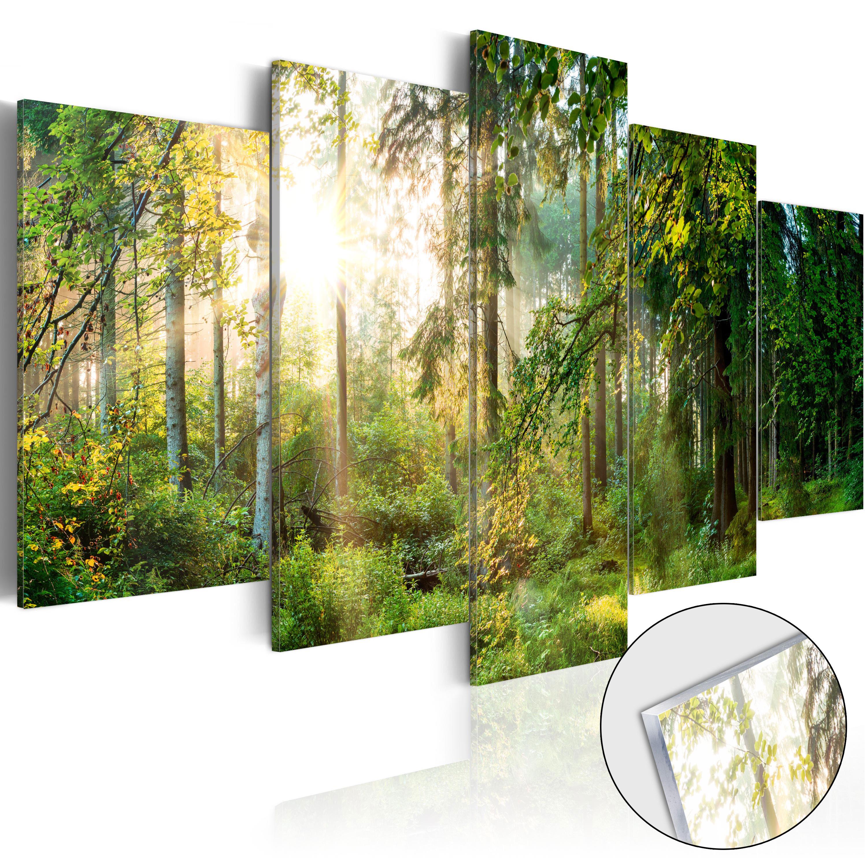 Quadri su vetro acrilico - Green Sanctuary [Glass] 100X50 cm