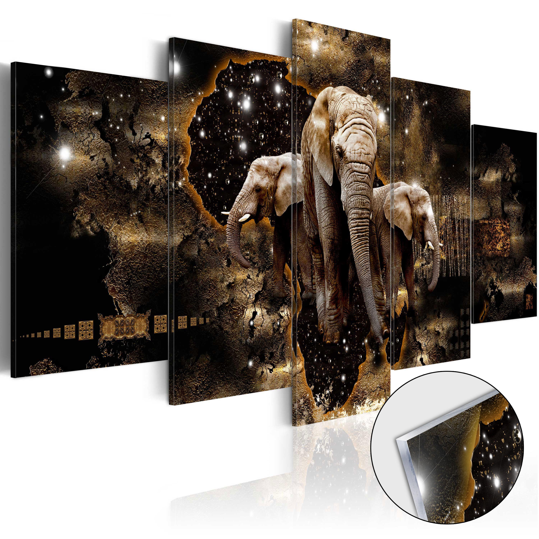 Quadri su vetro acrilico - Brown Elephants [Glass] 100X50 cm
