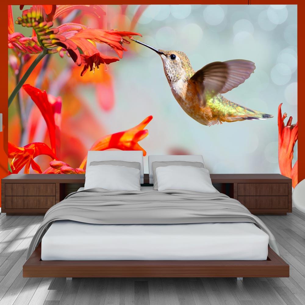 vlies fototapete kolibri vogel tapete blume wandbilder xxl
