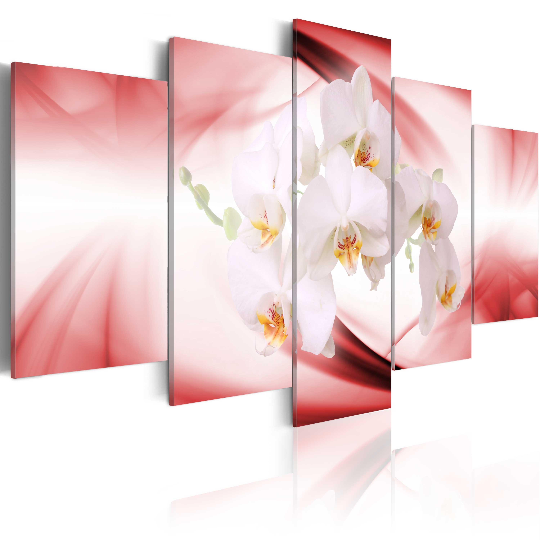 Tableau - Orchidée sur le fond rose et blanc