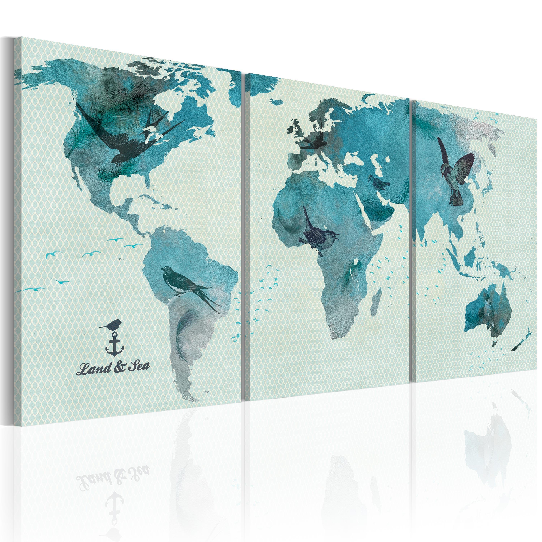 Tableau - Carte ornithologique du monde