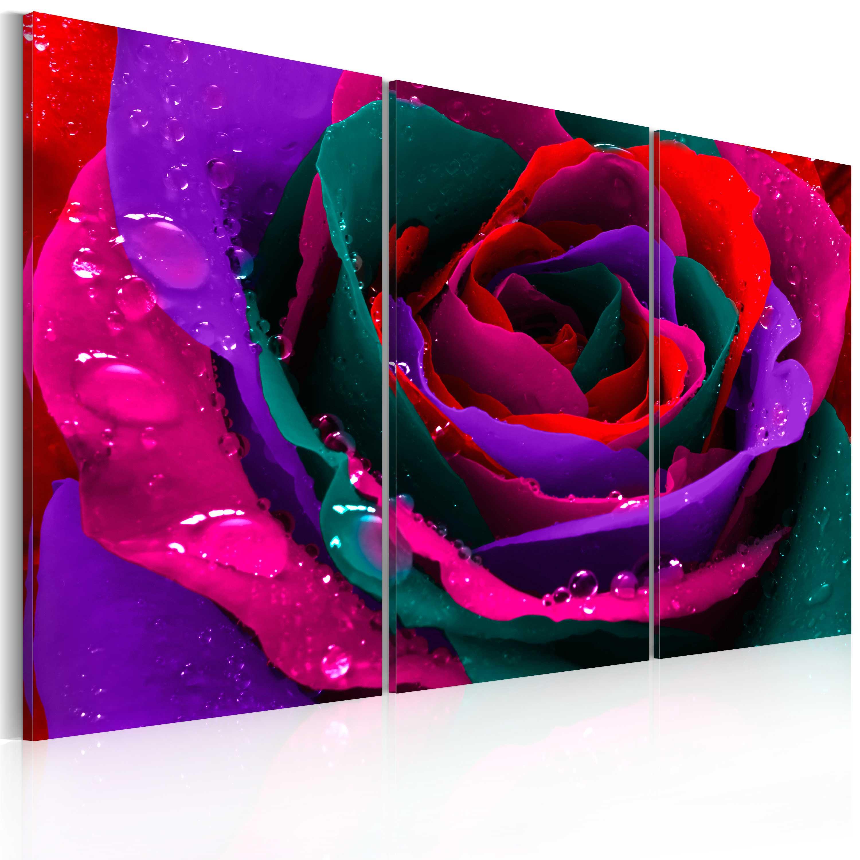 Tableau - Rose irisée
