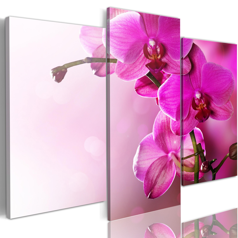 Tableau - Orchidée de couleur rose foncé
