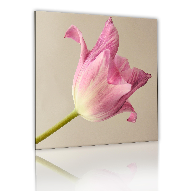 Tableau - Fleur de la tulipe