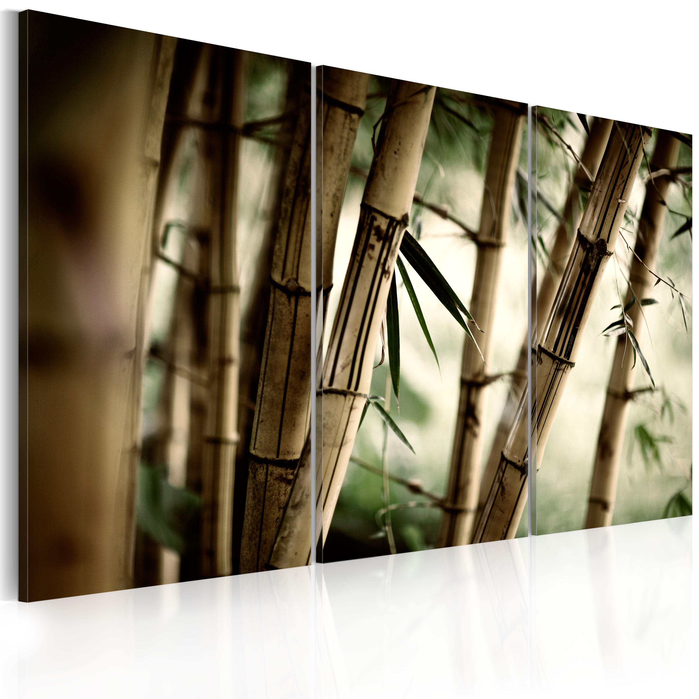 Tableau - forêt tropicale