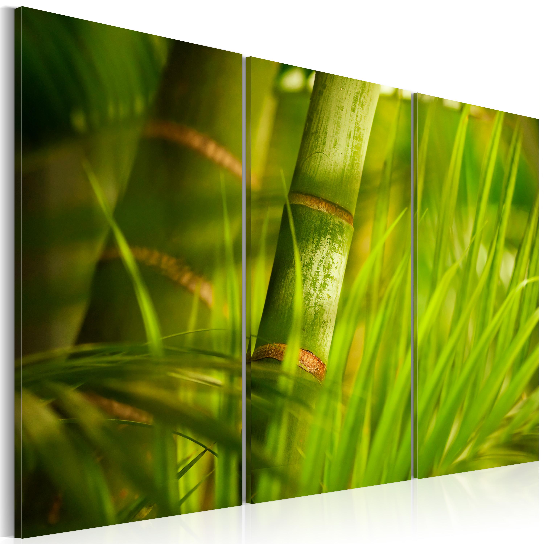 Tableau - Le vert vif des forêts tropicales