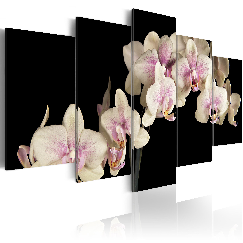 Tableau - Orchidée sur fond contrasté