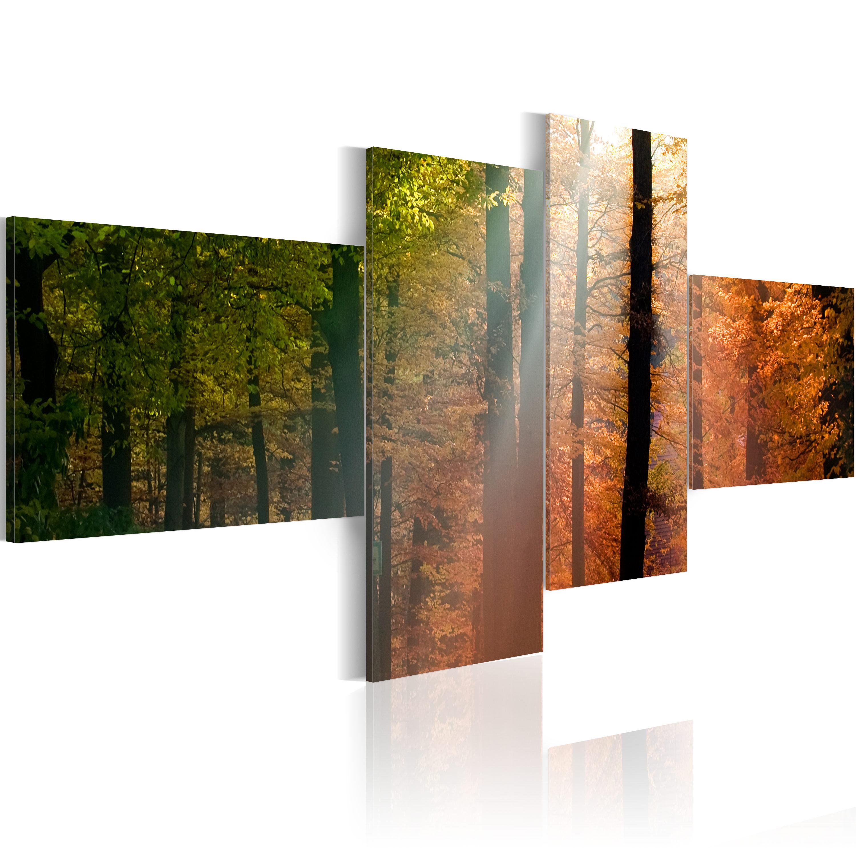 Tableau - Rayons de soleil parmi les arbres