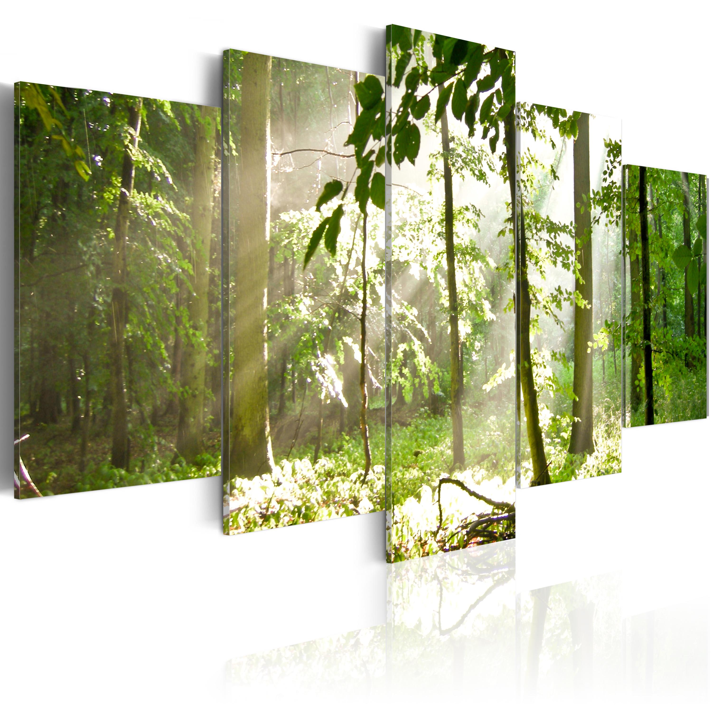Quadro - Raggio di luce tra gli alberi 100X50 cm