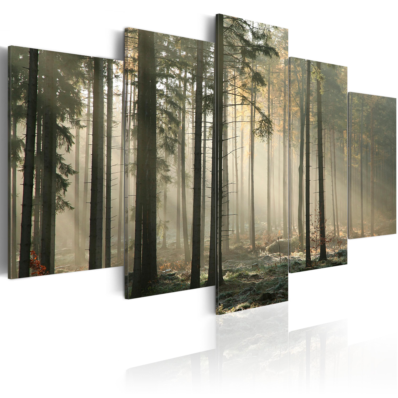 Tableau - Lumière dans une sombre forêt