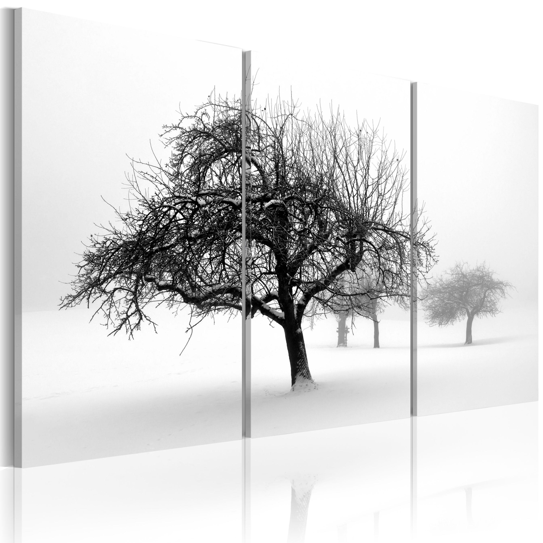 Quadro - Alberi coperti di neve 60X40 cm