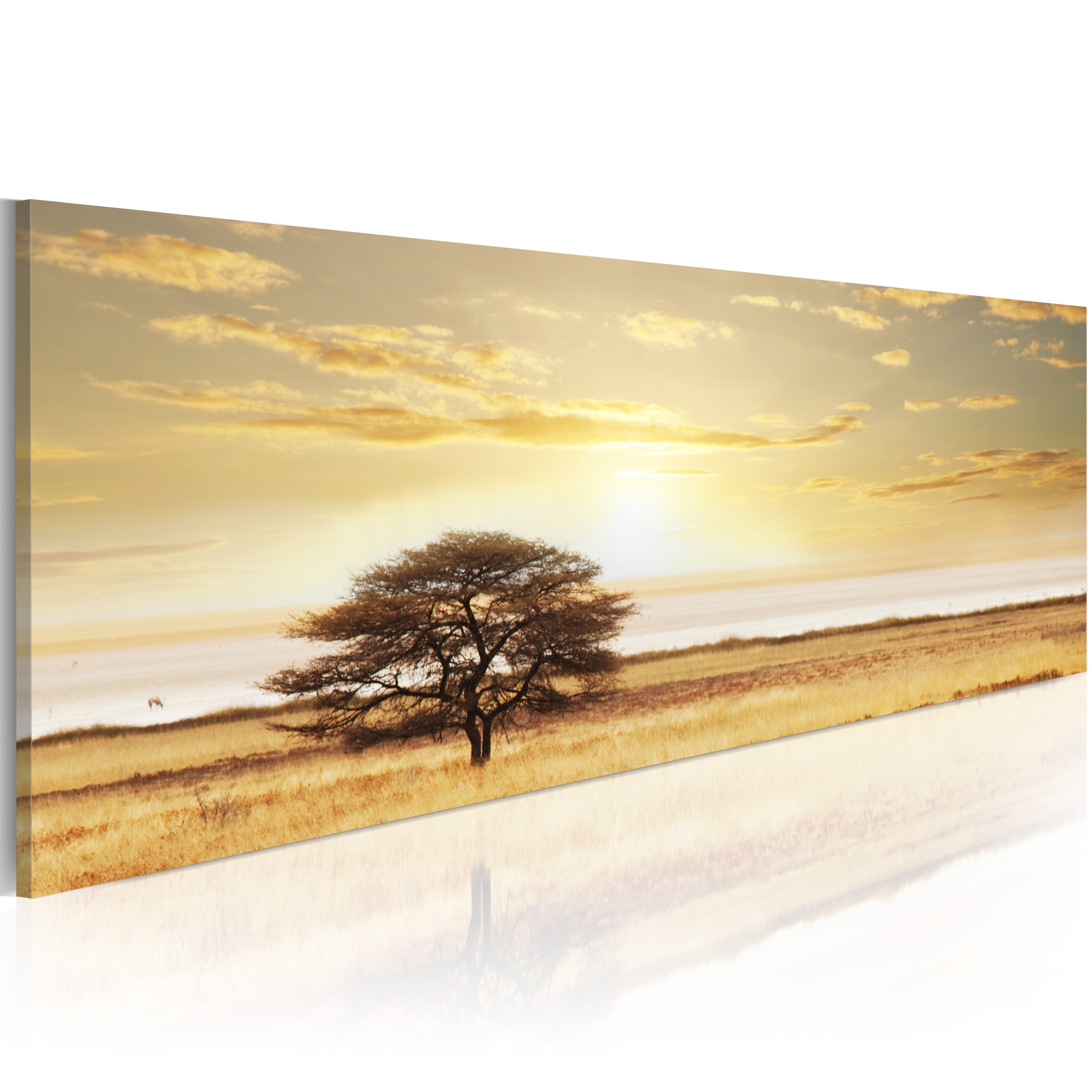 Quadro - Lonely tree on savannah 120X40 cm