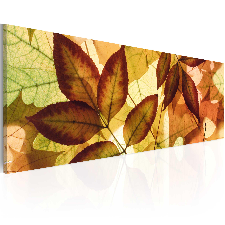 Quadro - collage - foglie 120X40 cm