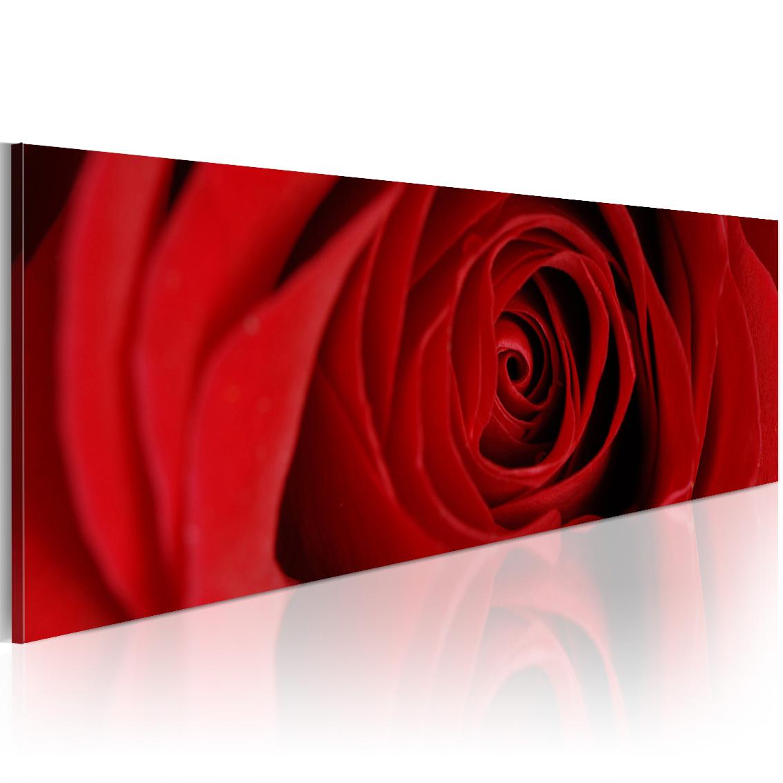 Quadro - Rosa del nord 120X40 cm