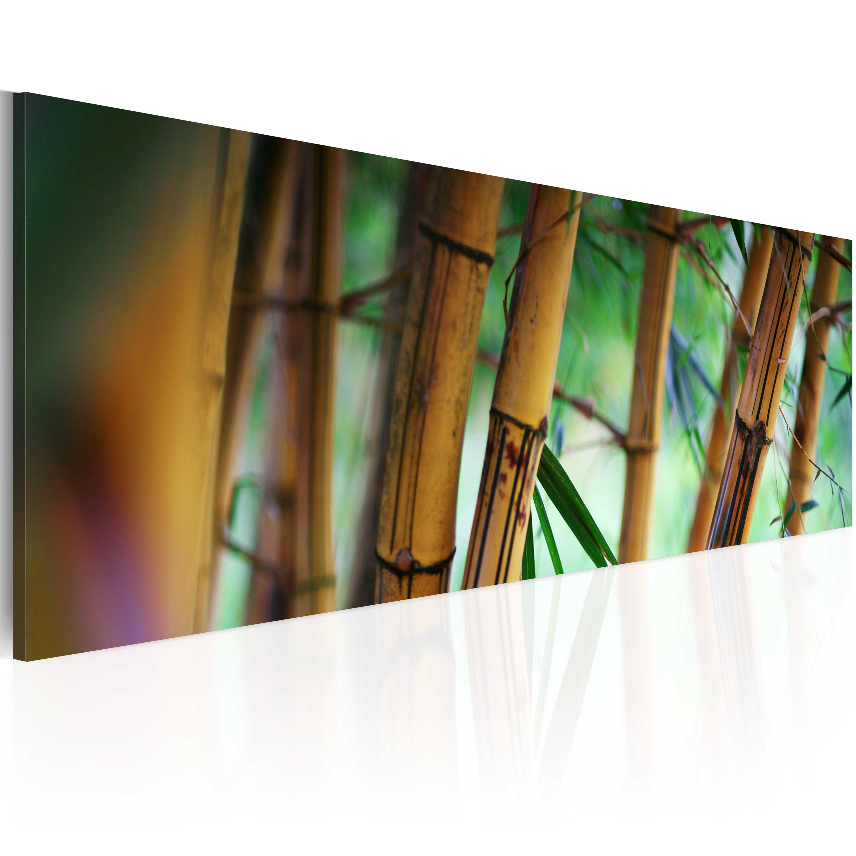 Quadro - Wild bamboos 120X40 cm