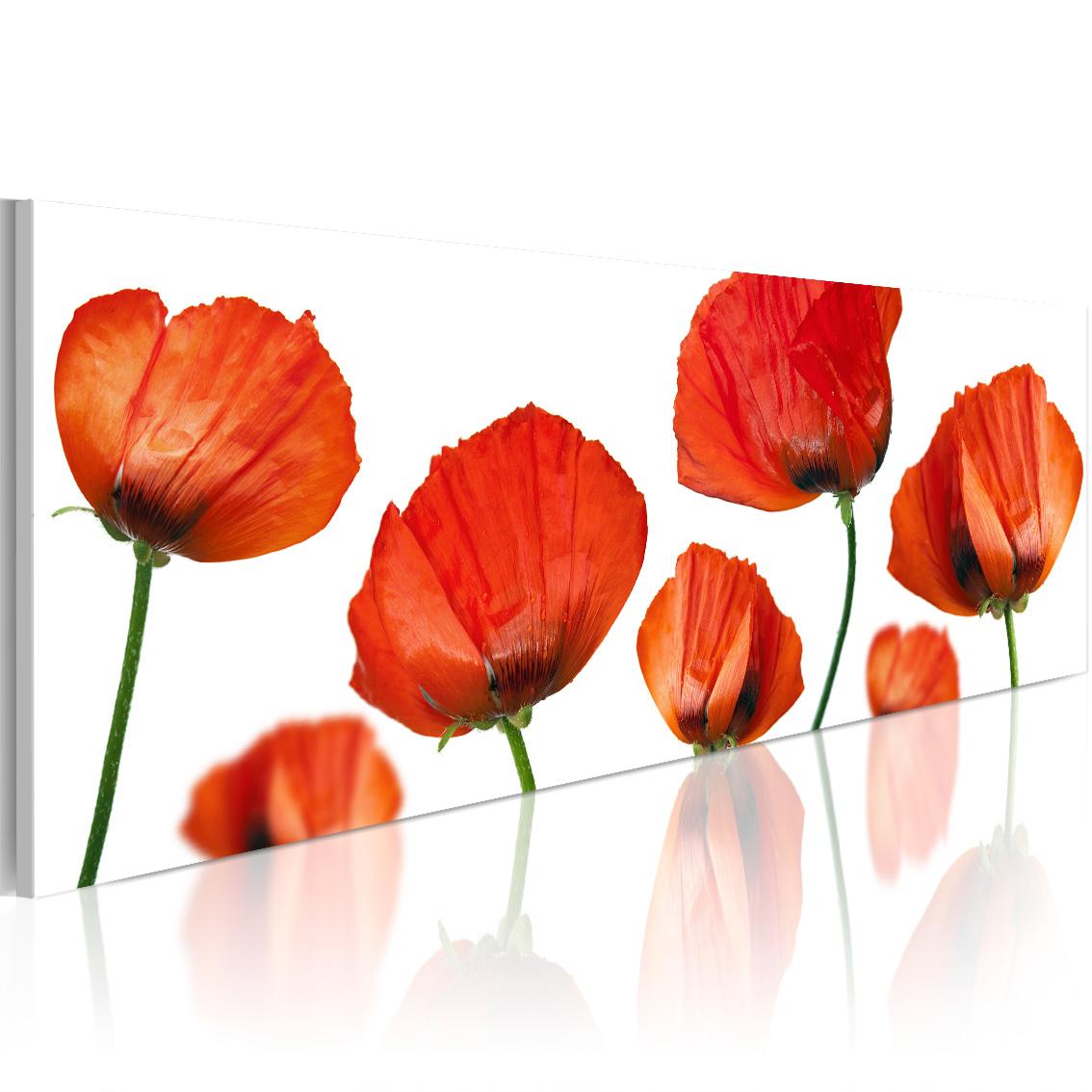 Quadro - Papaveri su sfondo bianco 120X40 cm