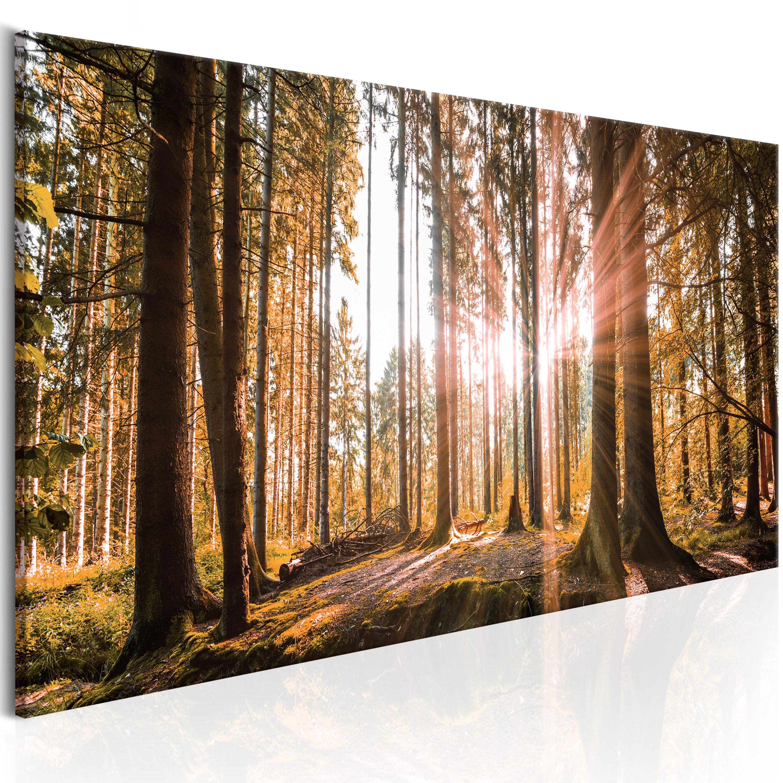 wandbilder wald landschaft leinwand bilder xxl ausblick kunstdruck c b 0077 b b ebay. Black Bedroom Furniture Sets. Home Design Ideas