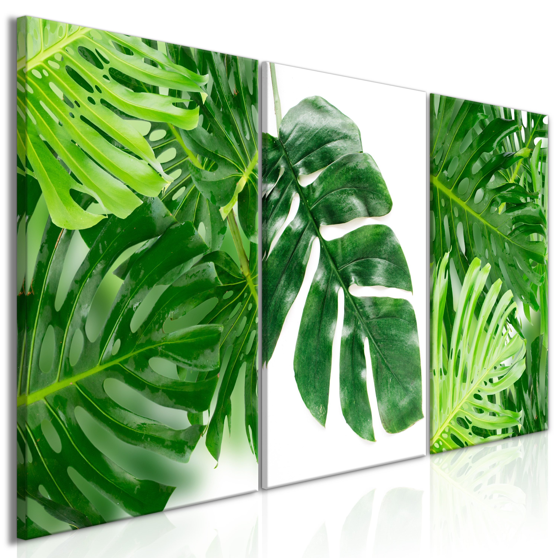 wandbilder xxl monstera blatt ananas kaktus leinwand bild pflanze tropisch palme ebay. Black Bedroom Furniture Sets. Home Design Ideas