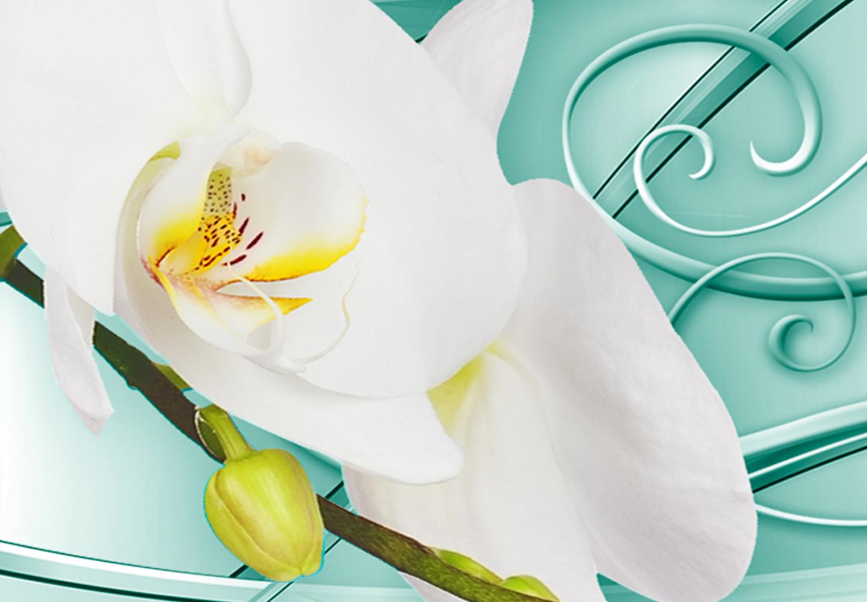 wandbilder xxl blumen orchidee abstrakte leinwandbilder wohnzimmer b c 0199 b b ebay. Black Bedroom Furniture Sets. Home Design Ideas