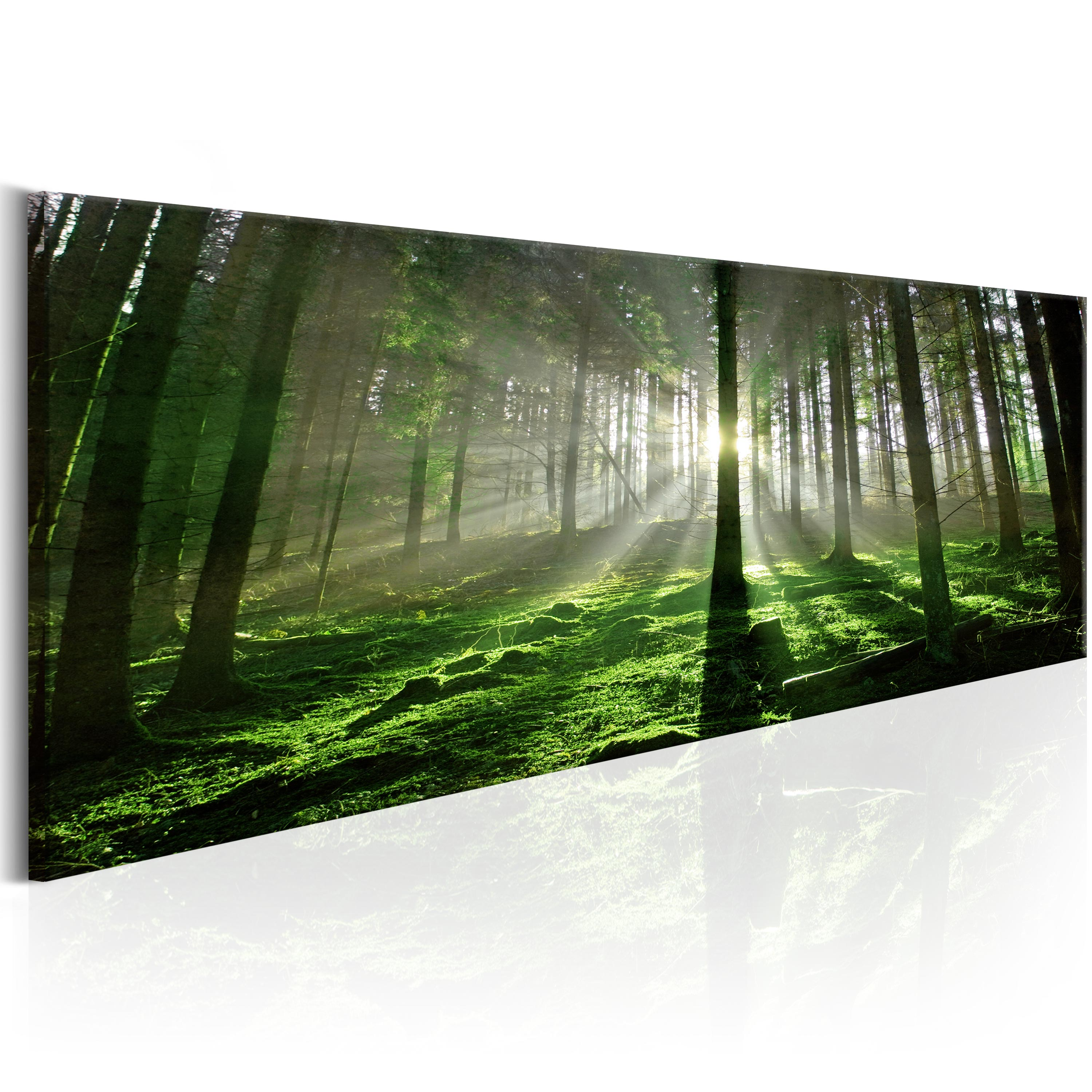 leinwand xxl bilder kunstdruck wandbild wald landschaft natur c b 0261 b a ebay. Black Bedroom Furniture Sets. Home Design Ideas