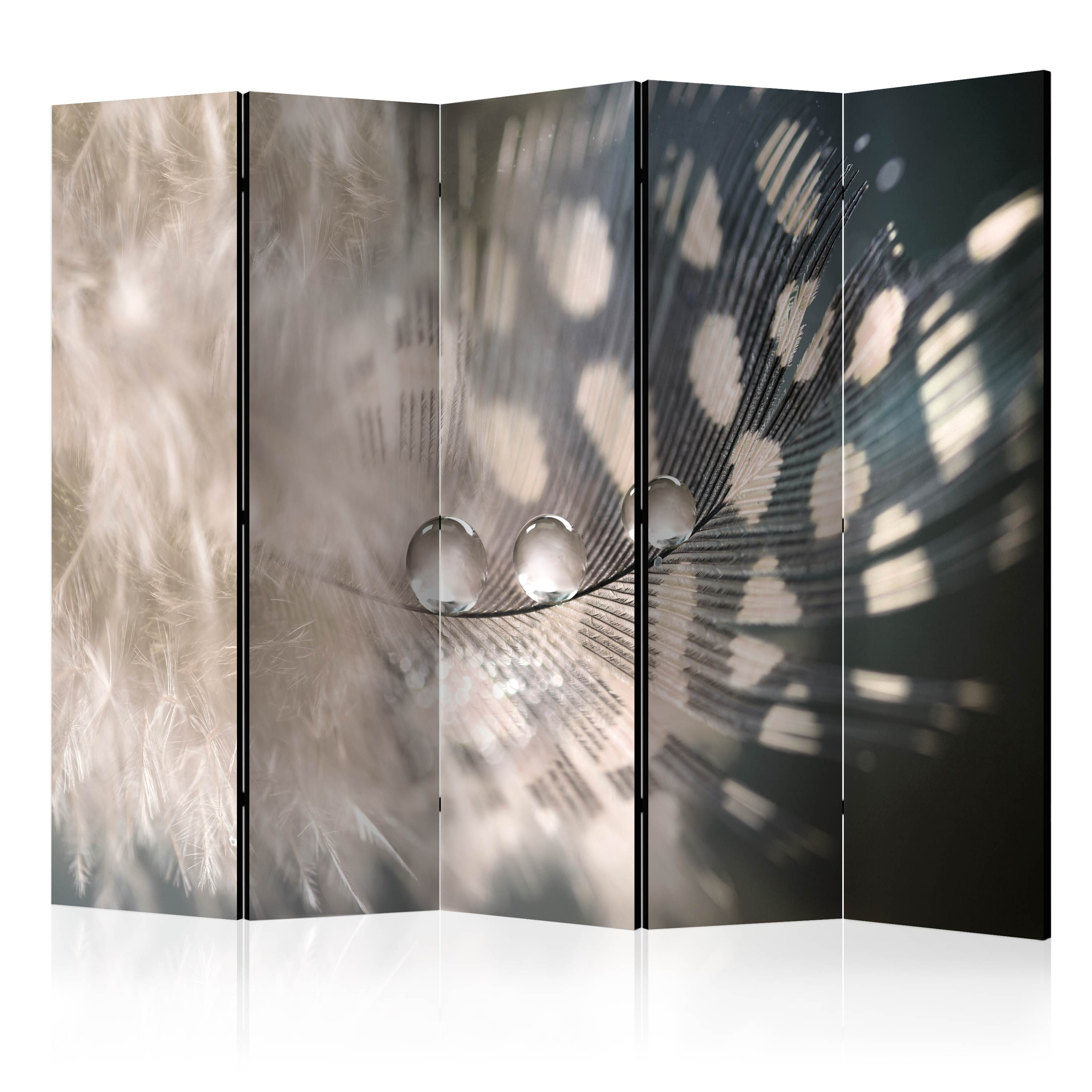 Paravento - Elegant Feather II [Room Dividers] 225X172 cm