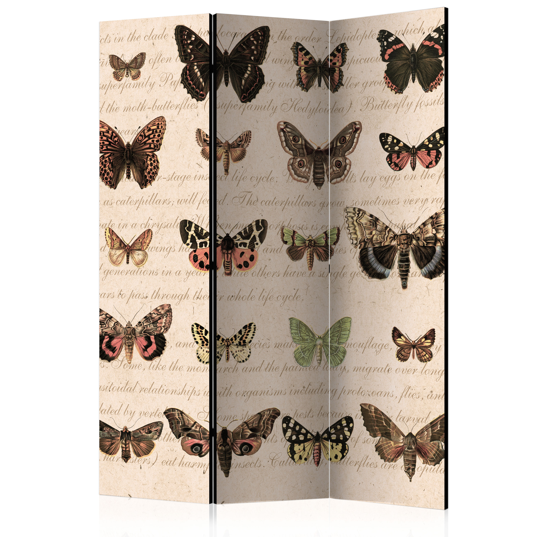Paravento - Retro Style: Butterflies [Room Dividers] 135X172 cm