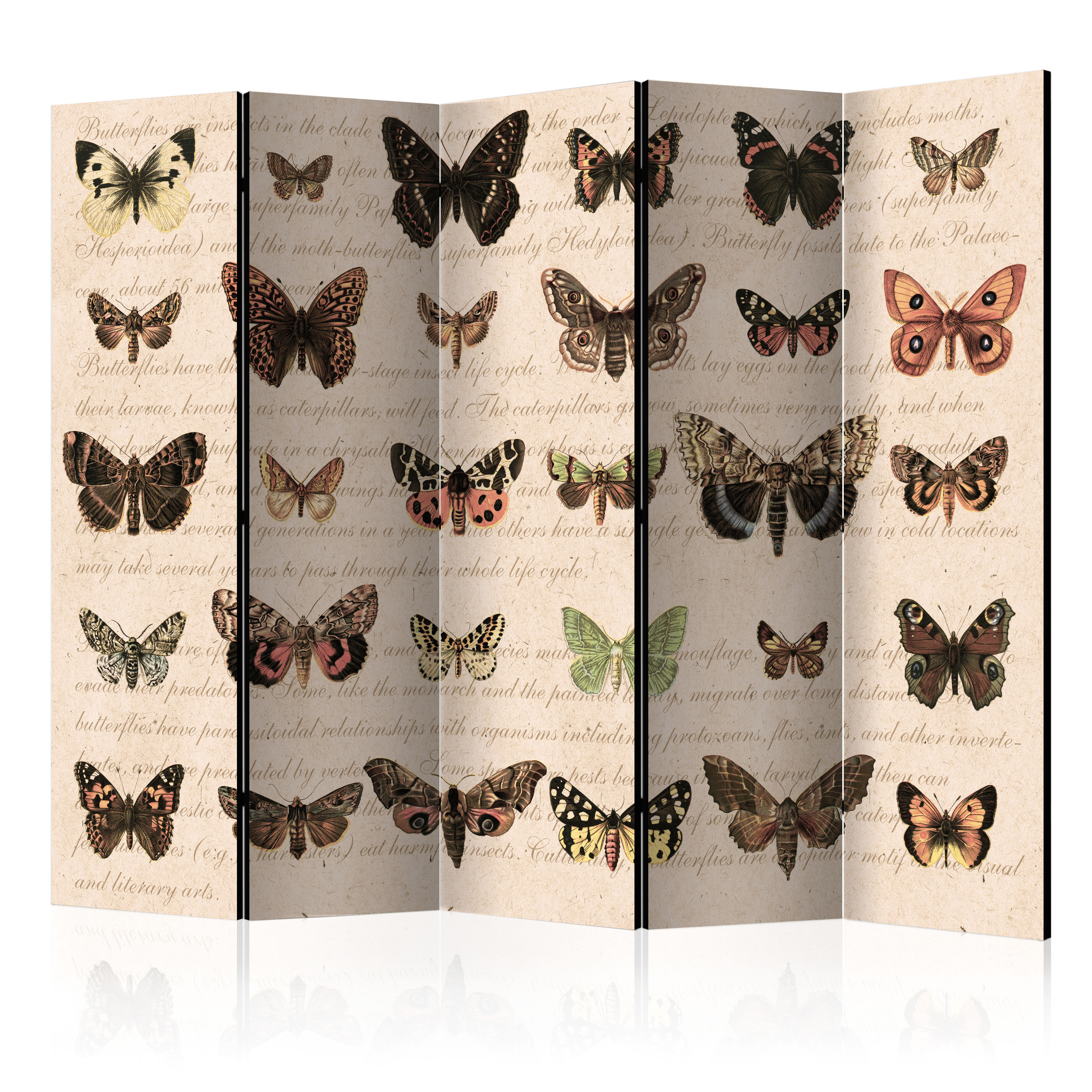 Paravento - Retro Style: Butterflies II [Room Dividers] 225X172 cm